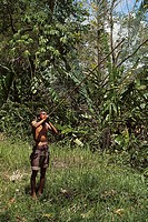 Orang asli man standing in the forest and using a blowpipe, Malaya, Malaysia