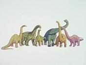 Palaeozoology - Jurassic Period - Dinosaurs - Cetiosaurus, Camarasaurus, Opisthocoelicaudia, Brachiosaurus, Mamenchisaurus, Diplodocus. Art work