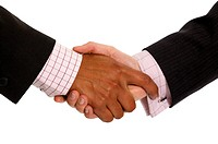 business handshake deal _ diversity