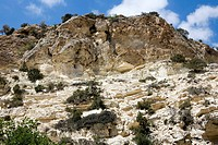 Reef remains in limestone. Limestone is a sedimentary rock laid down on the bed of prehistoric oceans and then uplifted to its present position. This ...