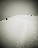 skiers, snow, sepia