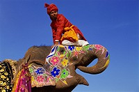 Asia, India, Rajasthan, Jaipur, Man with Painted Elephant