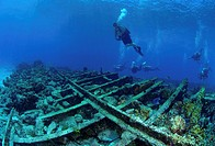 The Sugar wreck, Great Bahama Bank, Bahamas Islands
