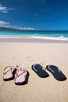 Flip flops on the beach  Maui, Hawaii