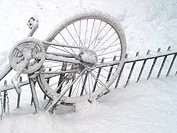 Bicycle, bicycles, bike, cold (thumbnail)