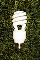 Studio shot of energy saving light bulb laying in grass (thumbnail)