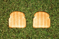 Two slices of toast on grass.