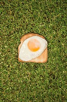 Fried egg on toast in grass