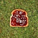 Slice of toast with jam on grass.