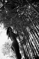 Nude young adult woman looking over shoulder standing in bamboo forest wearing lei