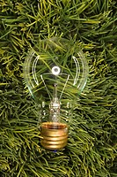 Studio shot of glass light bulb laying in grass