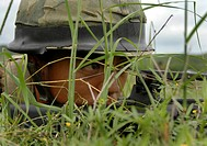 An infantryman takes up a position during an amphibious raid exercise