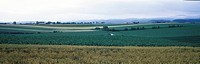 field, panorama, scene, nature, landscape, mountain, panoramic view