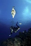 Diver with rays