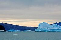 Icebergs at Lago Argentina, Los Glaciares National Park, El Calafate area, Santa Cruz province  Patagonia  Argentina