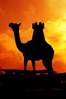 silhouette, dubai, camel, sunrise, sunset, yellow, orange