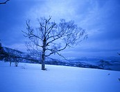 Snow scene, landscape, winter scene, sky, mountain, winter, scenery (thumbnail)