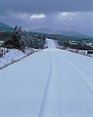scene, scenery, snow, winter, road, view, nature