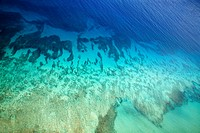 Colorful tropical ocean floor seen through clear water