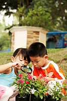 girl and boy looking at flowers with magnifying glass