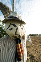 Scarecrow in field, close_up
