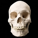 Human skull with teeth on black