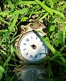 Broken clock lying in grass