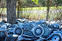 Stacks of old hubcaps on the ground next to tree