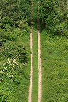 outdoors, way, path, road, markings, clear