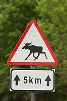 Arrows, Fixed, Direction, Sign Board, Animal