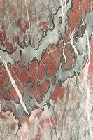 Detail, geology, metamorphic, rock, mottled, rough (thumbnail)