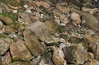 rock, stone, rocky, hard, uneven, seabed