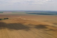 agricultural land, agriculture, aerial view