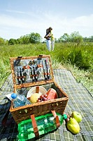 Couple having picnic (thumbnail)