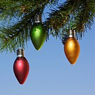 Red, green and orange ornaments hanging on Christmas tree branch against blue background