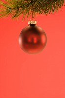 Still life of red Christmas ornament hanging from pine branch