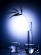 water, vase, glass cup, decoration, leaf, glass vase