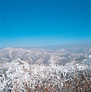 snowscape, snow, natural phenomenon, winter, mountain, scenery, tree