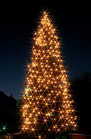 Illuminated Christmas Tree
