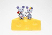Two Rats Which Sit On A Cheese