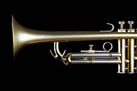 Single trumpet close-up (thumbnail)