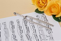 A Rose And A Tuning Fork And A Score