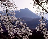 Mountain, landscape, spring, season, scene, sky, nature (thumbnail)