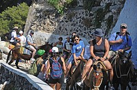 Tourists going up to Fira by donkey. Fira, Santorini, Cyclades, Greece, Europe