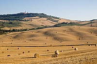 Italy, Tuscany, Bales of straw on corn field