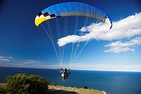 Paragliding in Mt  Maunganui, New Zealand