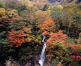 Azusa river, valley, waterfall, red leaves, Azumi, Matsumo, Nagano, Koshin_etsu, Japan, October