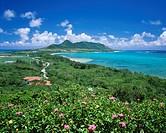 Tamatori cape observatory, Hirakubozaki, hibiscus, Ishigaki, Ishigakijima, Okinawa, Japan, sea, flower, plant