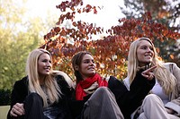 Women, beauty, sitting, bench, park, young adults (thumbnail)