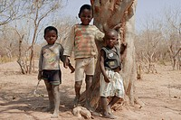 geography / travel, Zambia, people, children at tree, near Tonga Village near Siavonga at Kariba reservoir, Africa, Southern Zambia, ethnology, ethnic...